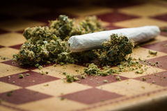 Marijuana joint closeup Stock Images
