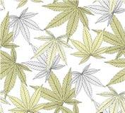 Marijuana lämnar den sömlösa modellen arkivfoto