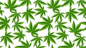 Marijuana lämnar den sömlösa vektormodellen royaltyfria foton