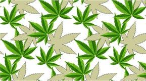 Marijuana lämnar den sömlösa vektormodellen royaltyfri foto