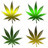 Marijuana leaf Royalty Free Stock Photography