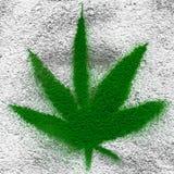 Marijuana leaf Stock Photos