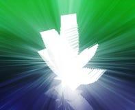 Marijuana leaf illustration Stock Photography