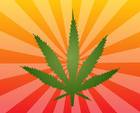 Marijuana leaf illustration Stock Images
