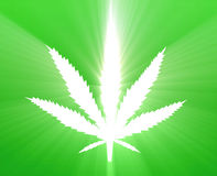 Marijuana leaf illustration Stock Photos