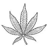 Marijuana Leaf Illustrazione nera d'annata dell'incisione di vettore Fotografie Stock