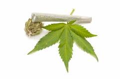Marijuana leaf and marijuana cigarette Stock Images
