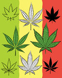 Marijuana leaf natural symbol design  Royalty Free Stock Photos