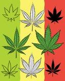 Marijuana leaf natural symbol design  Royalty Free Stock Photos