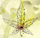Marijuana leaf on the old watercolor paper background, vector image Stock Photos
