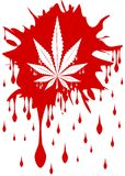 Marijuana leaf on spot of blood isolated Royalty Free Stock Image