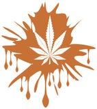 Marijuana leaf on spotted background Royalty Free Stock Photos