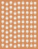 Marijuana leaf texture in green and white Stock Photos