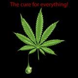 Marijuana leaf - THC Stock Photos