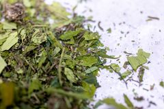 Marijuana leaves, Powder of Cannabis Drugs on a White background. Marijuana leaves, Powder of Cannabis Drugs on a White background, For Analysis in laboratory stock images