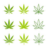 Marijuana leaves vector icons Royalty Free Stock Image