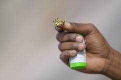 Marijuana legale Fotografie Stock Libere da Diritti