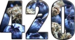 420 marijuana Logo With Blueberries & Bud Inside Lettering ilustração royalty free