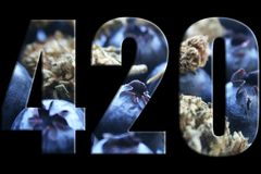 420 Marijuana Logo With Blueberries & Bud Inside Numbers High Quality royalty free stock images