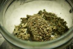 Marijuana médica Imagen de archivo libre de regalías
