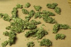 Marijuana médica RX Fotografía de archivo