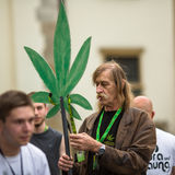 Marijuana Marches is a global movement manifesto fighting for a rational approach towards hemp plant. Royalty Free Stock Image