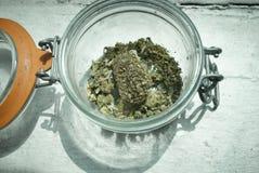 Marijuana medica Fotografie Stock