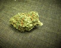 Marijuana medica Immagini Stock