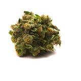 Marijuana medica 3 Fotografie Stock