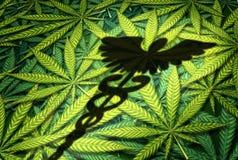 Marijuana medica illustrazione di stock