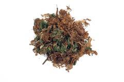 Marijuana mezclada con el tabaco Fotografía de archivo libre de regalías