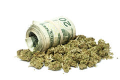 Marijuana and Money royalty free stock image