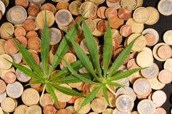 Marijuana and Money. Picture of Marijuana and Money Cannabis Business Concept Royalty Free Stock Photo