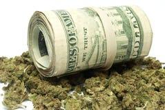 Marijuana och pengar Arkivfoto