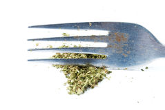 Marijuana, ogräs, cannabis & kruka, vit bakgrund Arkivfoton