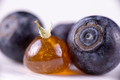Marijuana oil concentrate aka shatter with blueberries royalty free stock photo