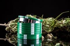 Marijuana på en vit bakgrund Arkivfoto