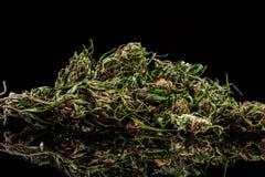 Marijuana på en vit bakgrund Arkivbild