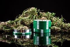 Marijuana på en vit bakgrund Arkivbilder