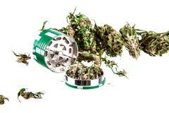 Marijuana på en vit bakgrund Royaltyfria Bilder