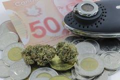 Marijuana på kanadensisk kassa och en sprejflaska royaltyfri fotografi