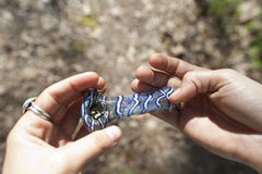Marijuana Pipe. Held in hand royalty free stock photography