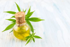 Free Marijuana Plant And Cannabis Oil Royalty Free Stock Photo - 88920505