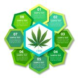 Marijuana plant and brain on CBD backgrounds vector illustration
