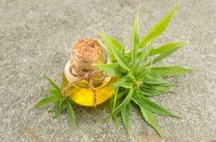 Marijuana plant and cannabis oil stock image