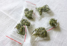 Marijuana in plastic bags Royalty Free Stock Images
