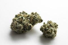 Marijuana Pot Weed Nugget. Marijuana nugget also referred to as pot and weed against a white background Stock Images
