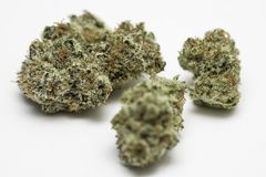 Marijuana Pot Weed Nugget. Marijuana nugget also referred to as pot and weed against a white background Stock Photos
