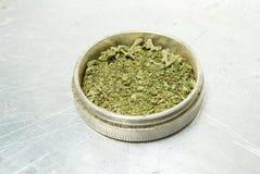 Marijuana. Receptläkarundersökning och fritids- drogbransch. Royaltyfria Foton