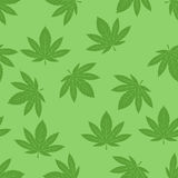 Marijuana seamless pattern vector. Green marijuana background vector illustration. Seamless pattern leaf herb narcotic textile. Grass medical agriculture Stock Images